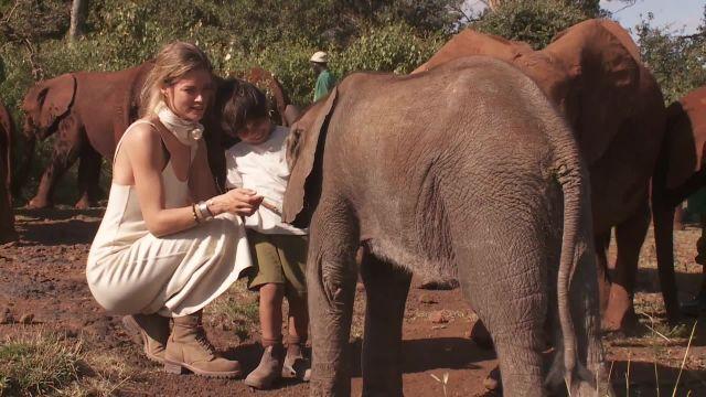 CNE Video | Supermodel Doutzen Kroes Wants to Save the Elephants
