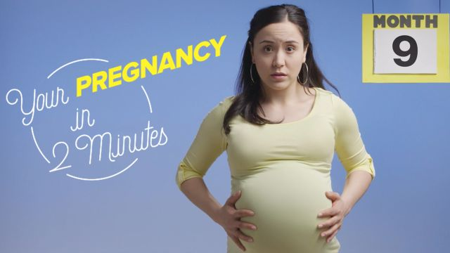 CNE Video | This is Your Pregnancy in 2 Minutes
