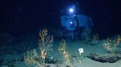 The Alvin Submarine Part 2: Incredible Views On-Board the Deep-Sea Vessel