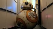 Everything You Ever Wanted to Know About Star Wars' BB-8