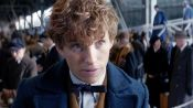 """The Amazing Visual Effects of """"Fantastic Beasts and Where to Find Them"""""""