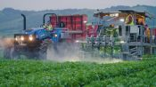 Welcome to Salinas! The Farming Town Where Robots Reign