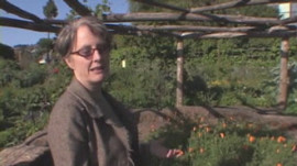 Alice Waters Gives a Tour of the Edible Schoolyard
