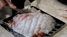 How to Make Brains!