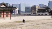 The Streets of Seoul Under Quarantine