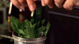 How to Make a Mint Julep Cocktail