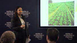 Engineering Sustainable Biofuels