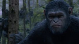 "Bonus Content: Could A ""Dawn of the Planet of the Apes"" Disaster Actually Happen?"