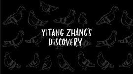Yitang Zhang's Discovery
