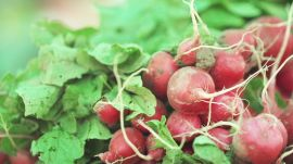 6 Tips for Farmers' Market Shopping