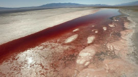 """Where """"Chinatown"""" Began: Flying Over Owens Lake During California's Drought"""