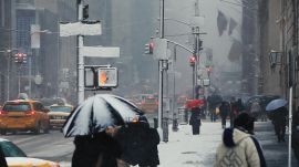 Nice Storm: The Blizzard of 2016 Is a Scientific Classic