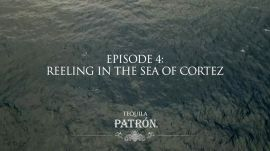 Episode 4: Reeling in the Sea of Cortez