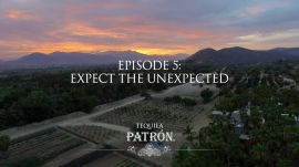 Episode 5: Expect the Unexpected