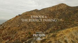 Episode 6: The Perfect Pairing