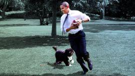 22 Adorable White House Pets