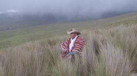 Out of Quito and into Ecuador's Wild