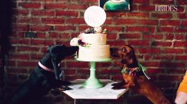 This Wiener Dog Wedding Is the Cutest