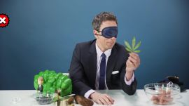 We Blindfolded Seth Meyers and Made Him Touch a Bunch of Things