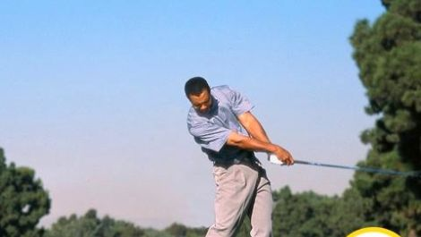The Evolution of Tiger's Swing