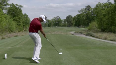 Swing Analysis: Stewart Cink