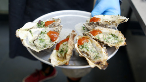 Tomales Bay Oyster Company: Farm-to-Table Freshness