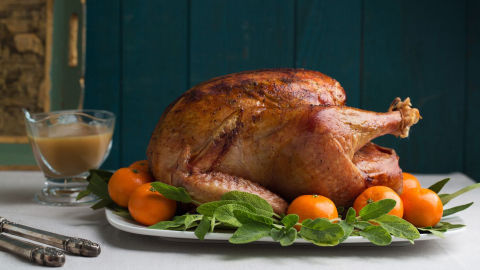Turkey and Chicken 101