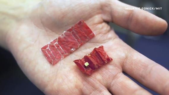 The Crazy Plan to Use Swallowable Origami to Fish Batteries Out of Tummies
