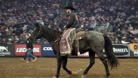 Professional Bull Rider Madness at Madison Square Garden