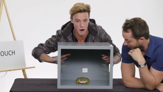 Cameron Dallas Touches a Frog, a Dead Octopus & Other Weird Stuff
