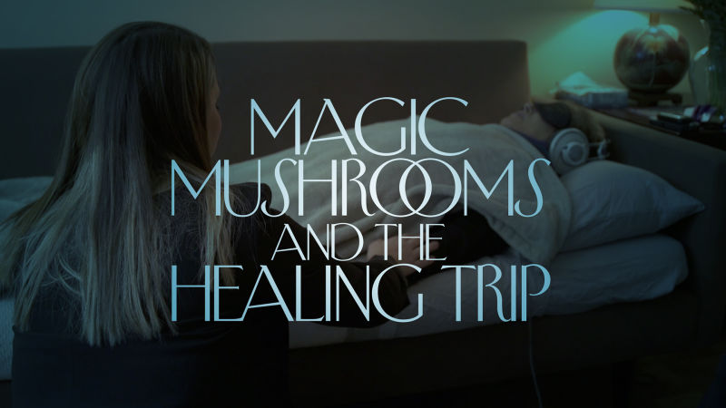 Shrooms Trip