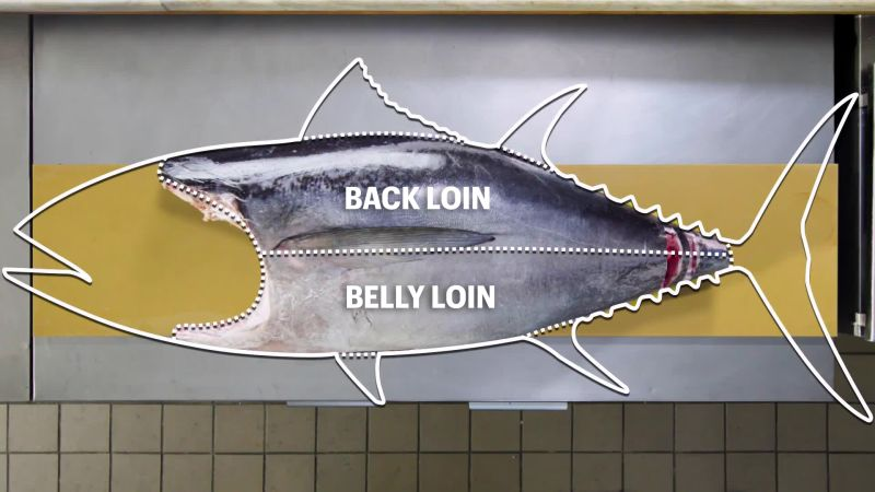 Handcrafted - How To Butcher a Whole Tuna: Every Cut of Fish Explained