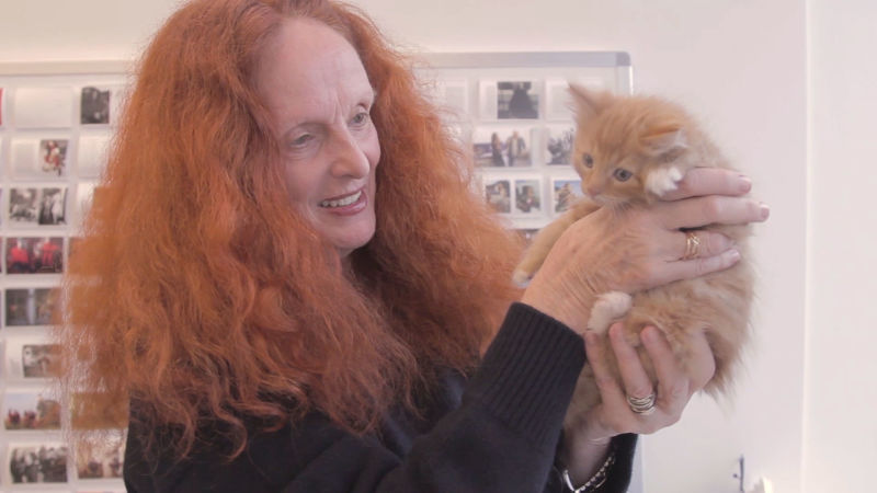 UberKittens Come to Grace Coddington's Office at Vogue