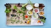 A Day In the Life of AL's Place, the Best New Restaurant in America 2015