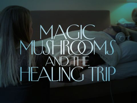 Magic Mushrooms and the Healing Trip
