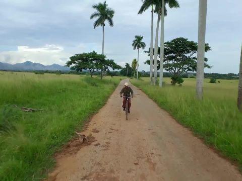 The Cyclist (El Ciclista)