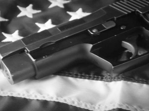 How the N.R.A. Went from Gun Club to Gun Lobby