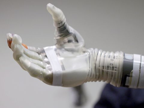 A Robotic Arm Controlled by the Mind