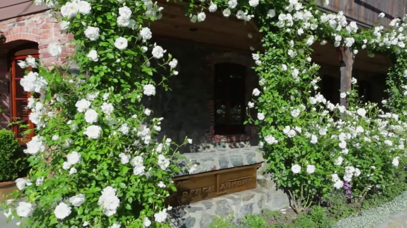 The French Laundry's Greatest Secret