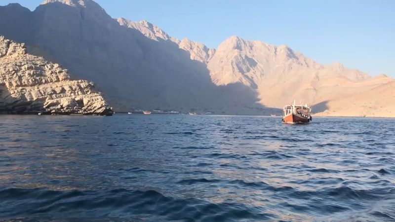 Racing Dolphins in Musandam, Oman