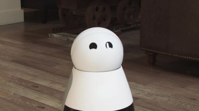 The Unrelenting Weirdness of Interacting With Robots