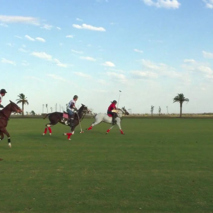Playing Polo: The Sport of Kings in Argentina