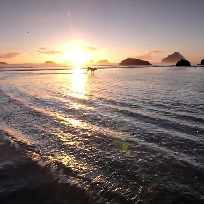 Big Data Determines the Most Romantic Beaches in the U.S.