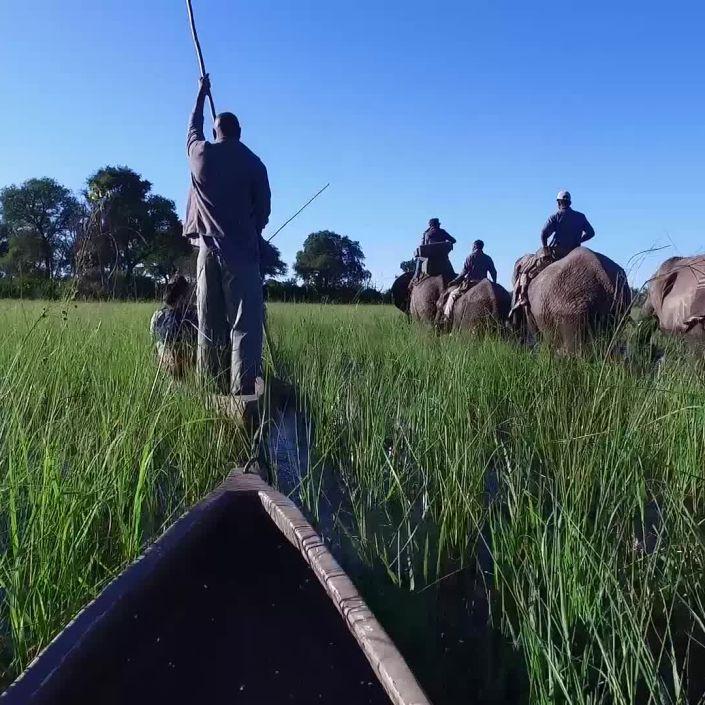 Botswana: Go on Safari with Condé Nast Traveler's VOYAGES