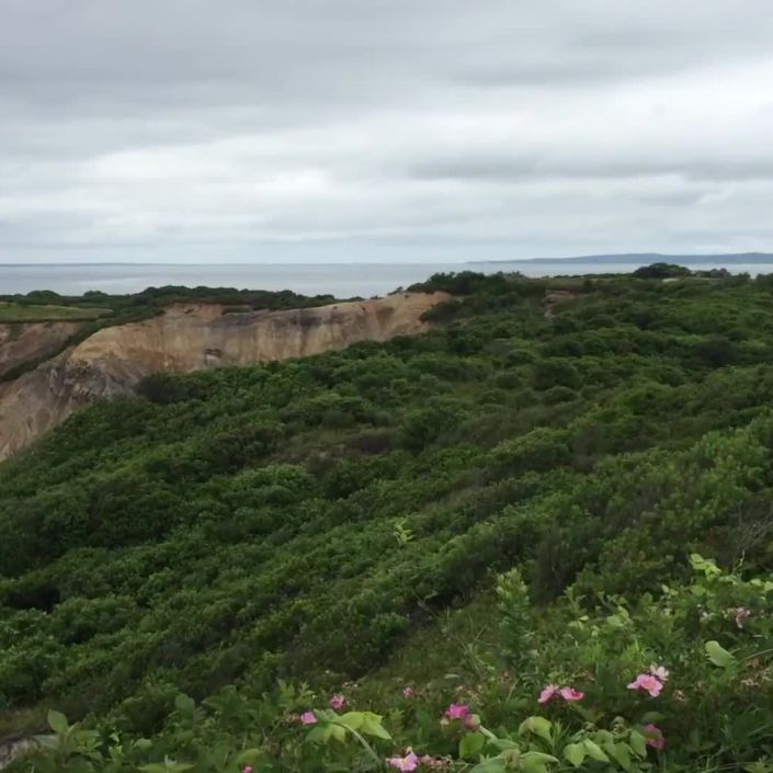 The Perfect Weekend on Martha's Vineyard
