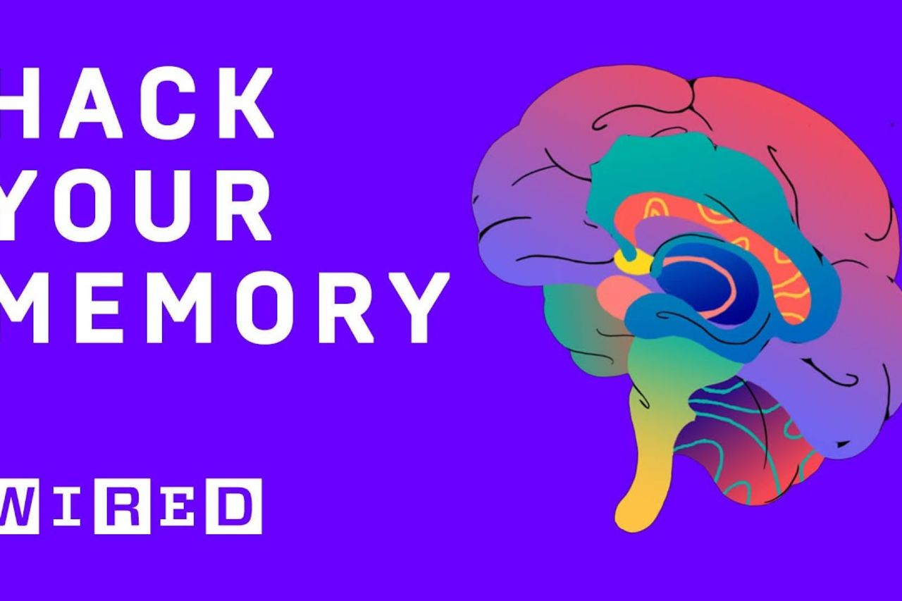 This hack will help you memorise almost anything | WIRED Explains