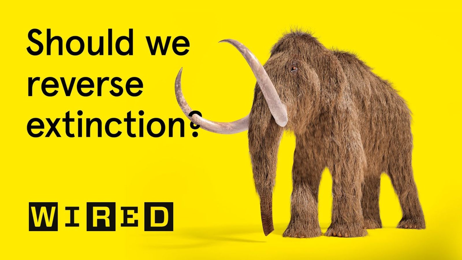 What if... we could bring extinct animals back to life? | What If