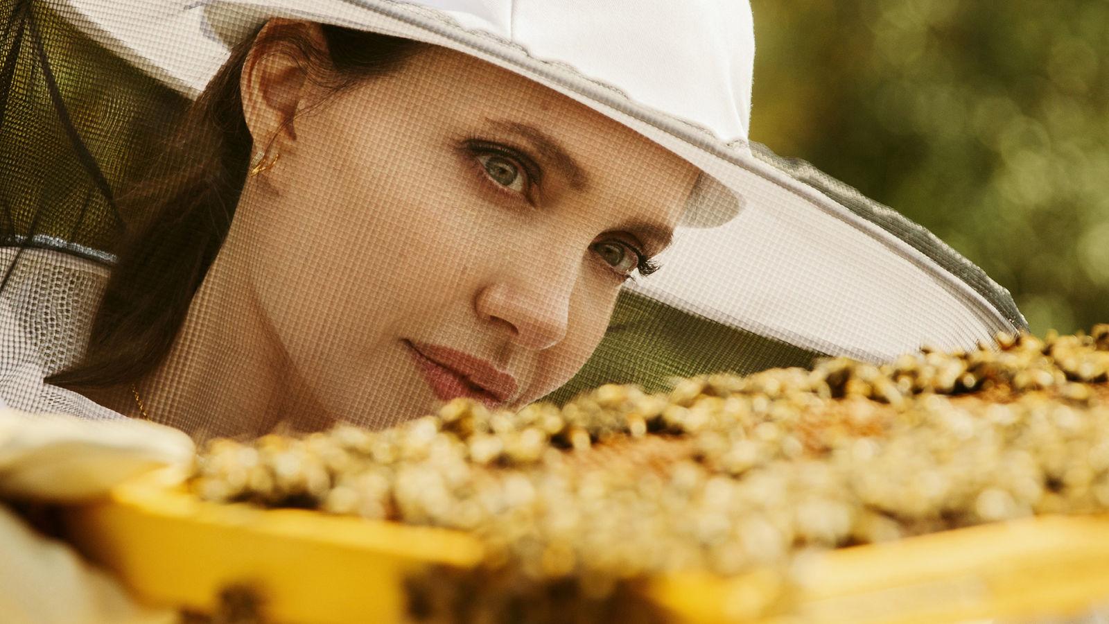 Angelina Jolie quiere salvar a las abejas (y empoderar a las apicultoras)
