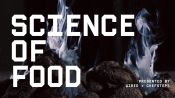 Science of Food | The Truth About Grilling With Charcoal