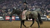 Professional Bull Rider Madness at Madison Square Garden